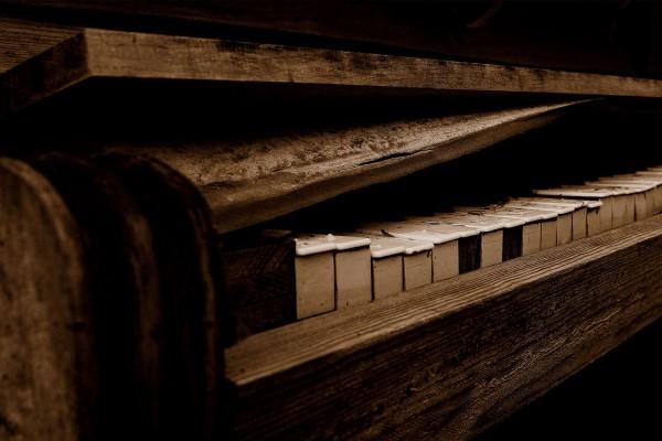 klaver9118E2BE-43CD-7B9D-FF62-A98D32D888ED.jpg